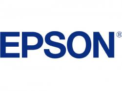 Epson METALLIC PHOTO PAPER - GLOSSY 8.5 X 11, S045589, Paper/Labels/Transparencies/Plastic Card
